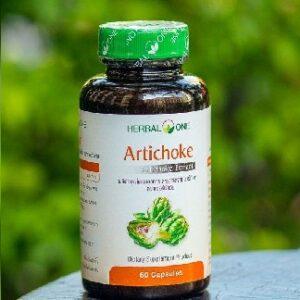 Herbal One Artichoke Capsules, Капсулы артишока, 60  шт