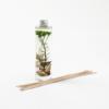 Диффузер с листьями Белый чай, 200 мл